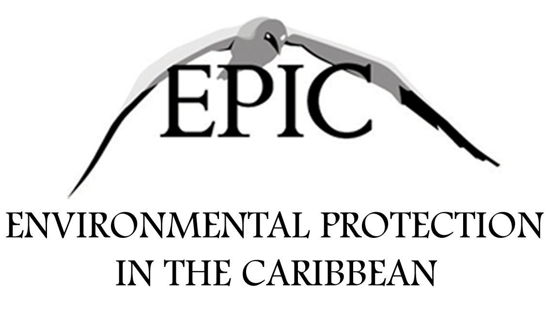 Environmental Protection in the Caribbean