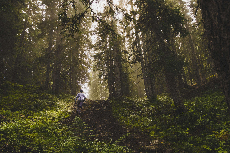 Beaufortain Trails