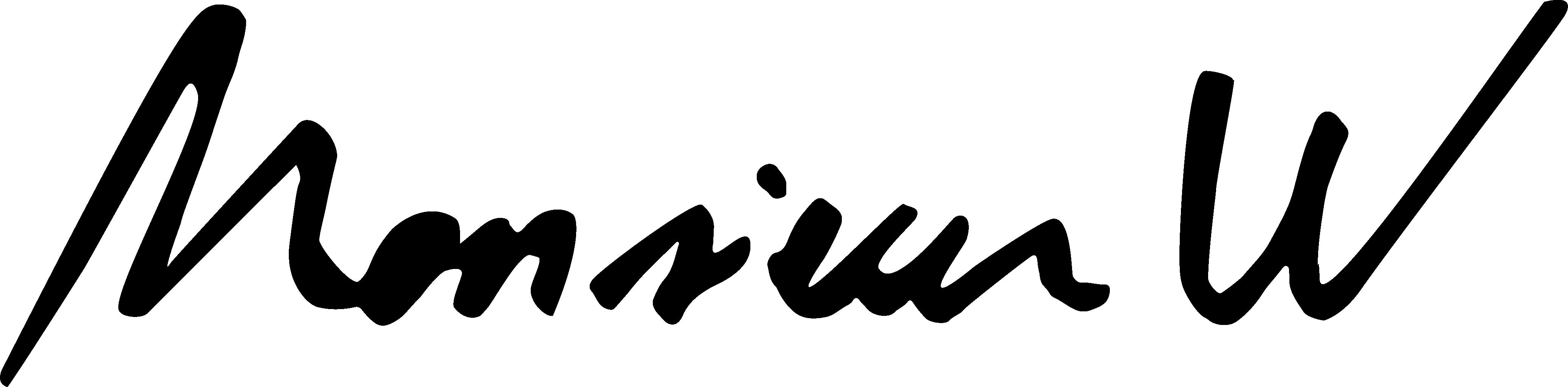 Logo Monsieur W personnalisation