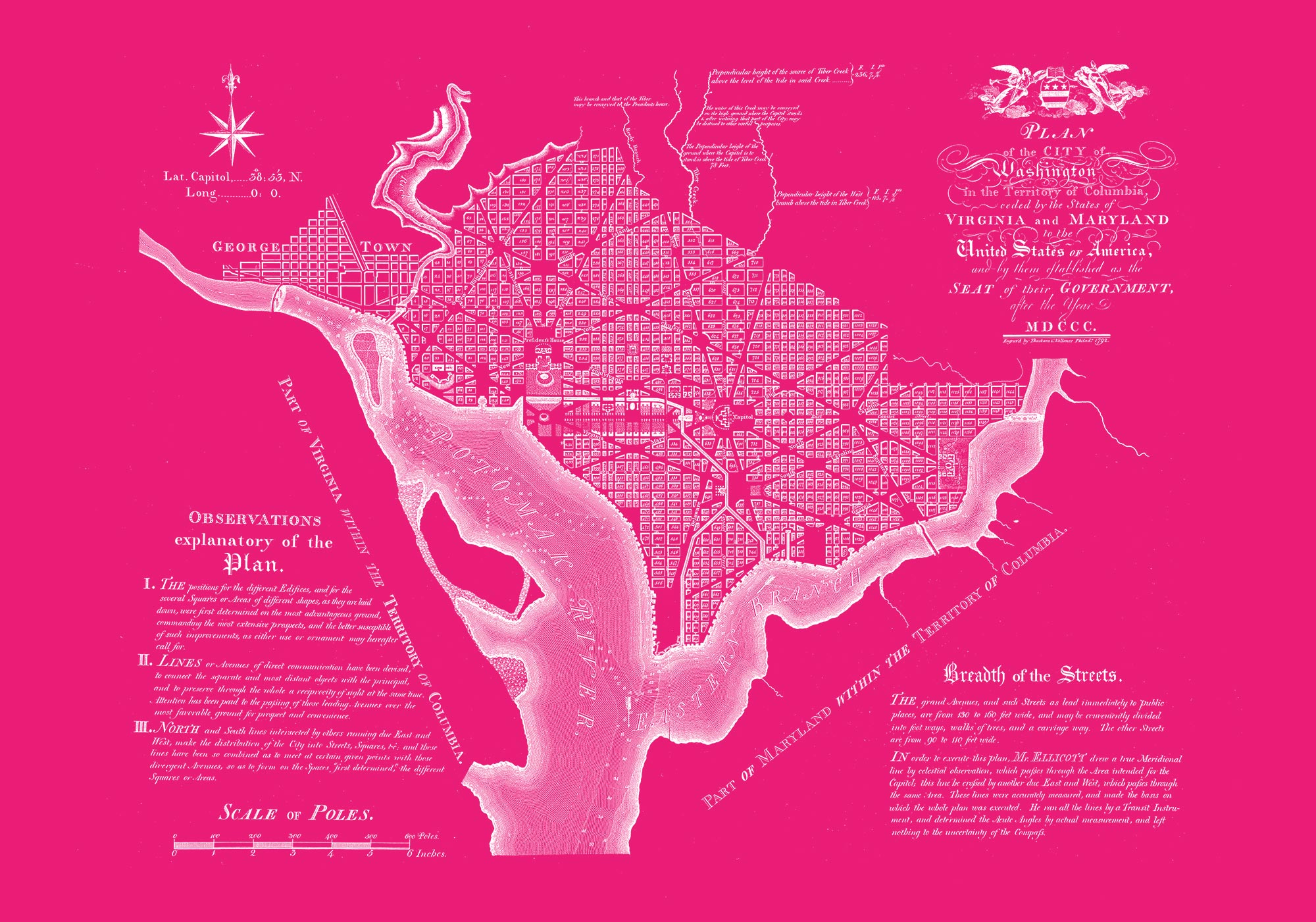 "Washington DC 1792 (pink canvas, 30"" x 21"")"