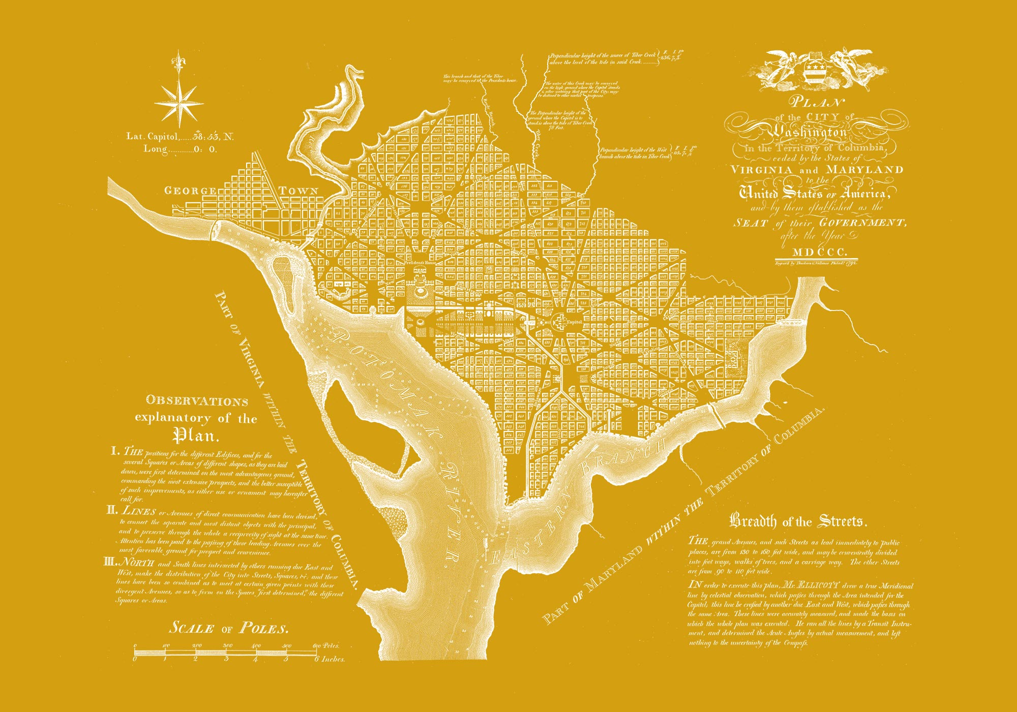 "Washington DC 1792 (yellow canvas, 30"" x 21"")"