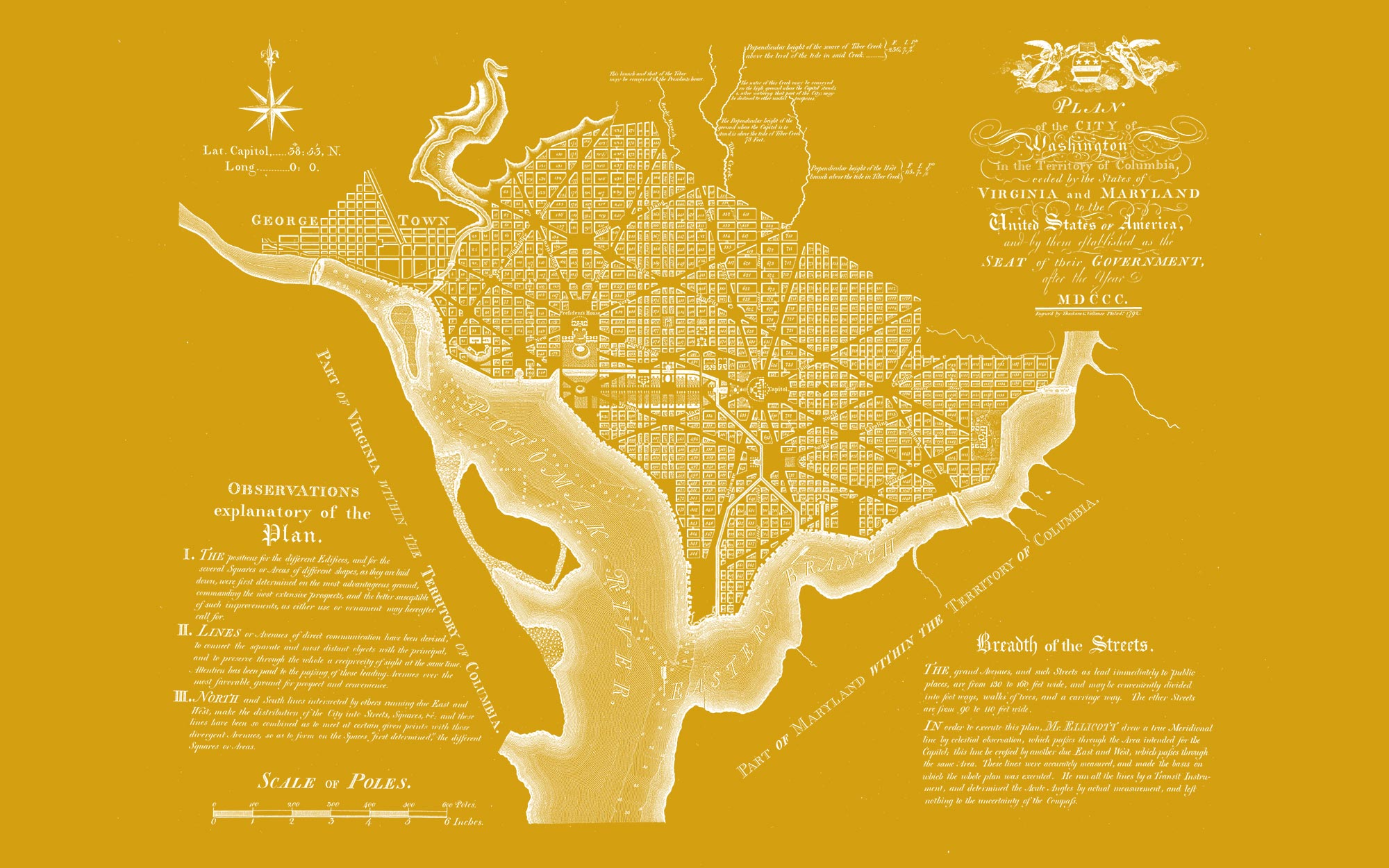 "Washington DC 1792 (yellow canvas, 48"" x 30"")"