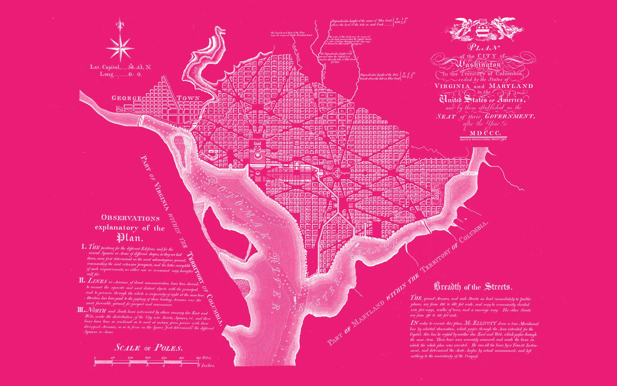 "Washington DC 1792 (pink canvas, 48"" x 30"")"