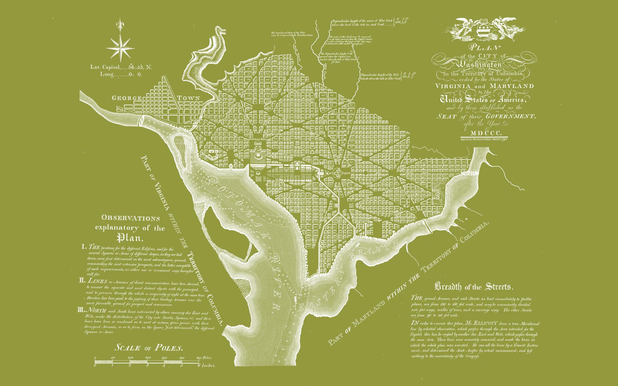 "Washington DC 1792 (olive green, 48"" x 30"")"