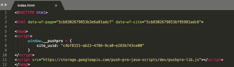 Screenshot of the code snippet included in the index.html