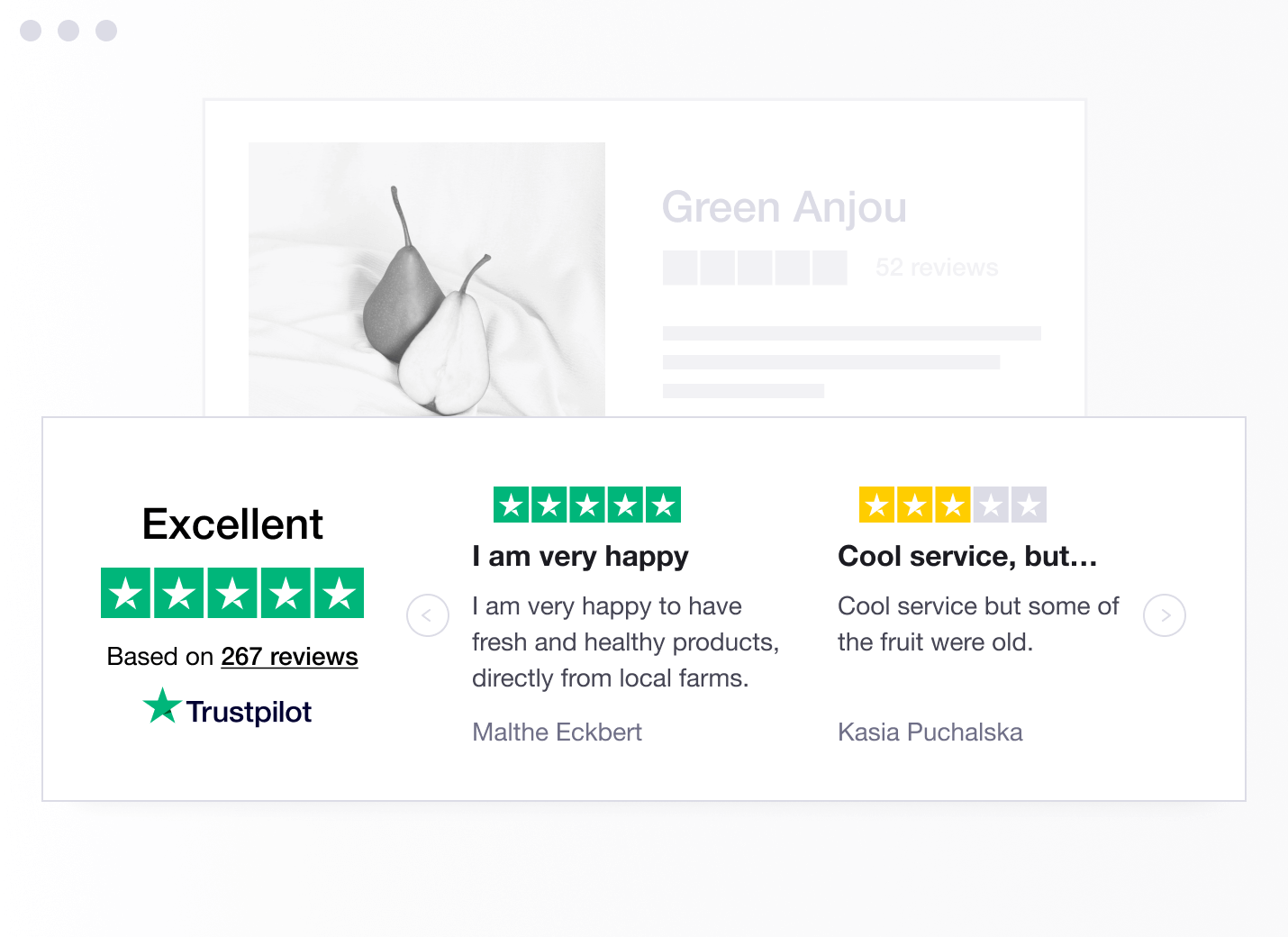 Example Trustpilot review
