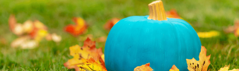 teal pumpkin in field