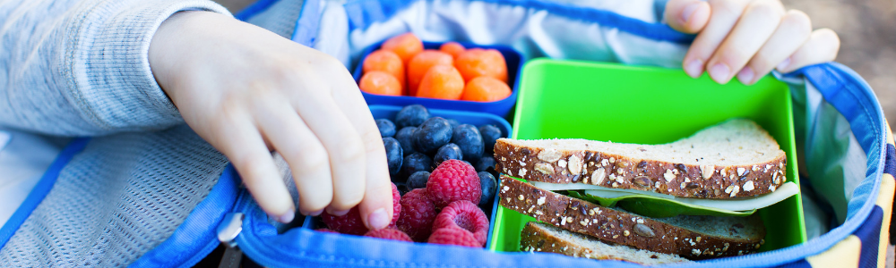 Closeup of child's lunch box packed with healthy food