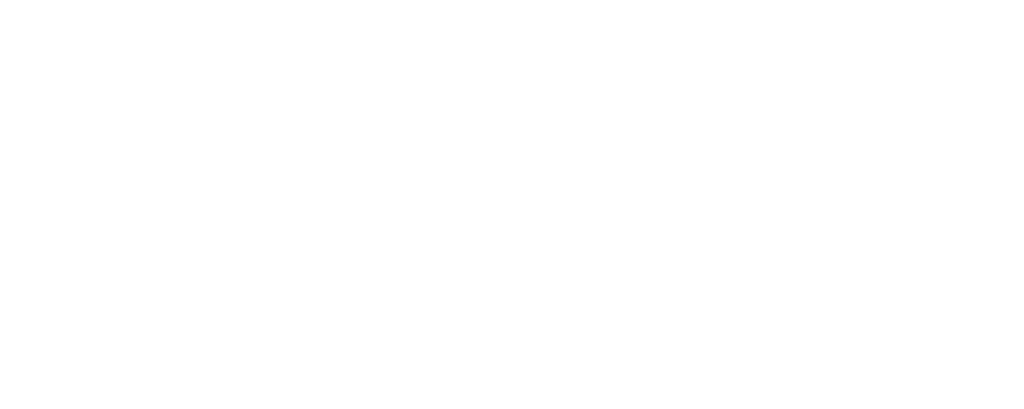 Maximus Strategic Consulting logo