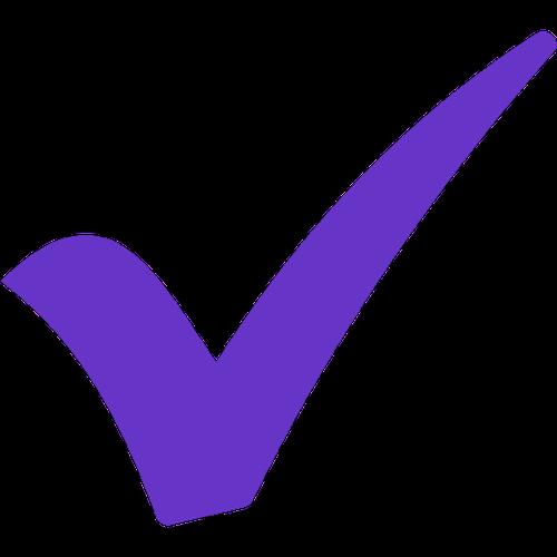 VVS - Done - lila pin check
