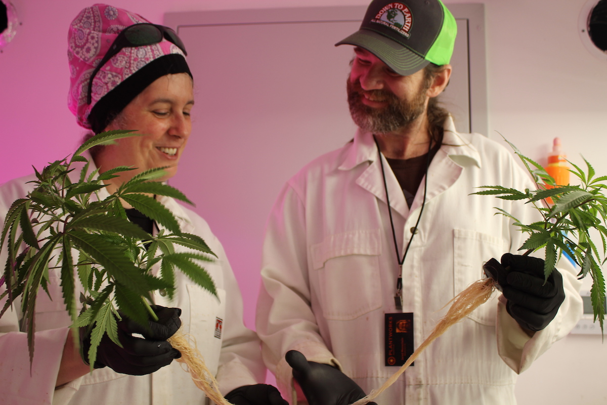 Plantworks Cannabis owners and growers