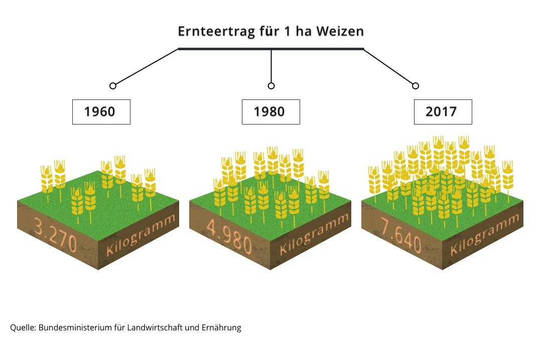 Infografik (Landwirt)