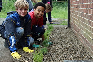 Archbishop Juniors Gardening