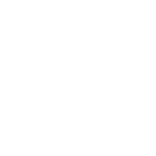 Quality & Safety Assurances Icon