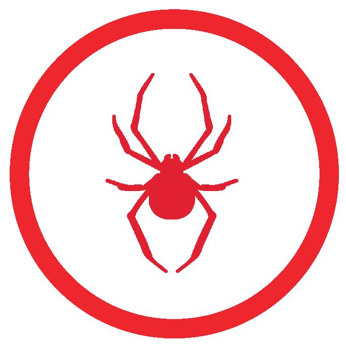 spider treatment Sarasota Fl.