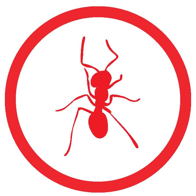 ant treatment Sarasota Fl.