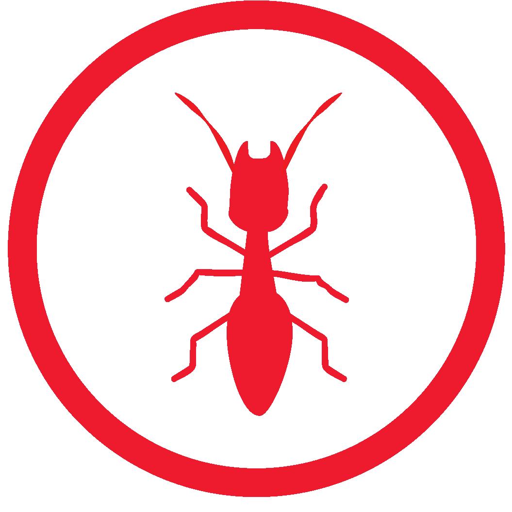 termite treatment Sarasota Fl.