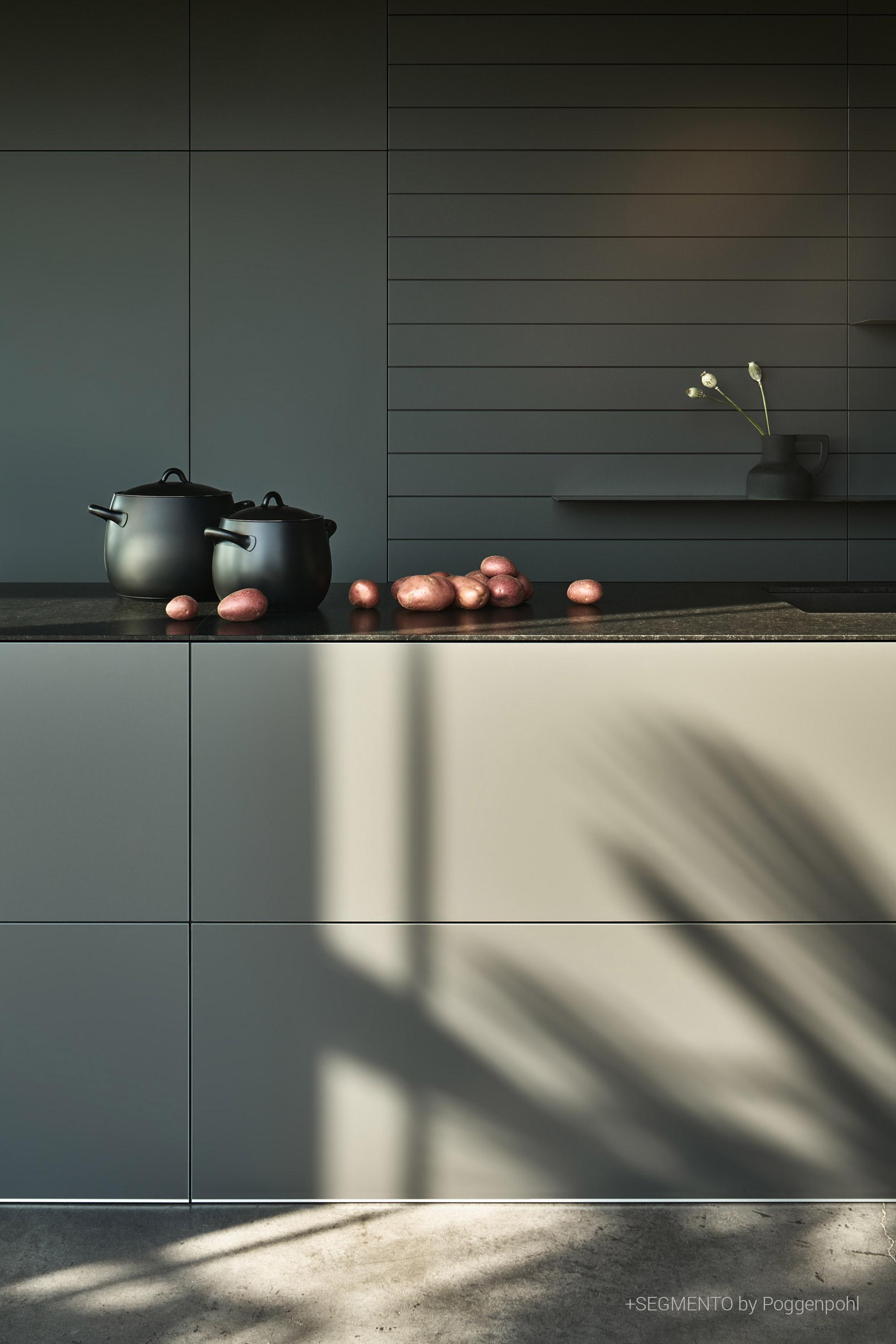 Poggenpohl +Segmento kitchen detail