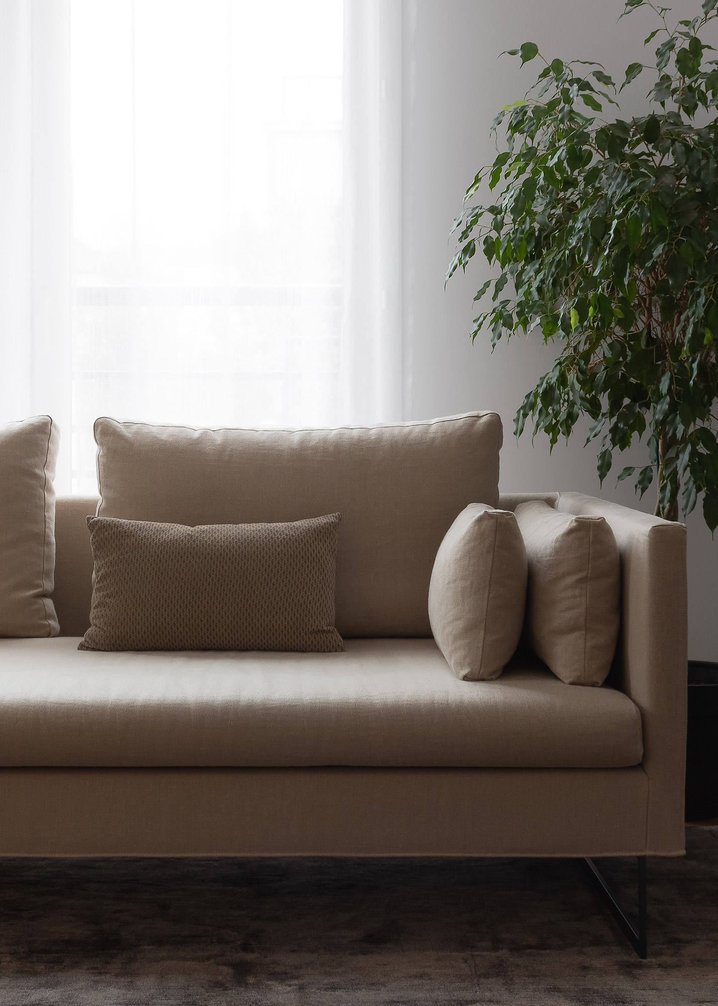 Contemporary sofa in natural linen in front of window with silk rug and ficus plant