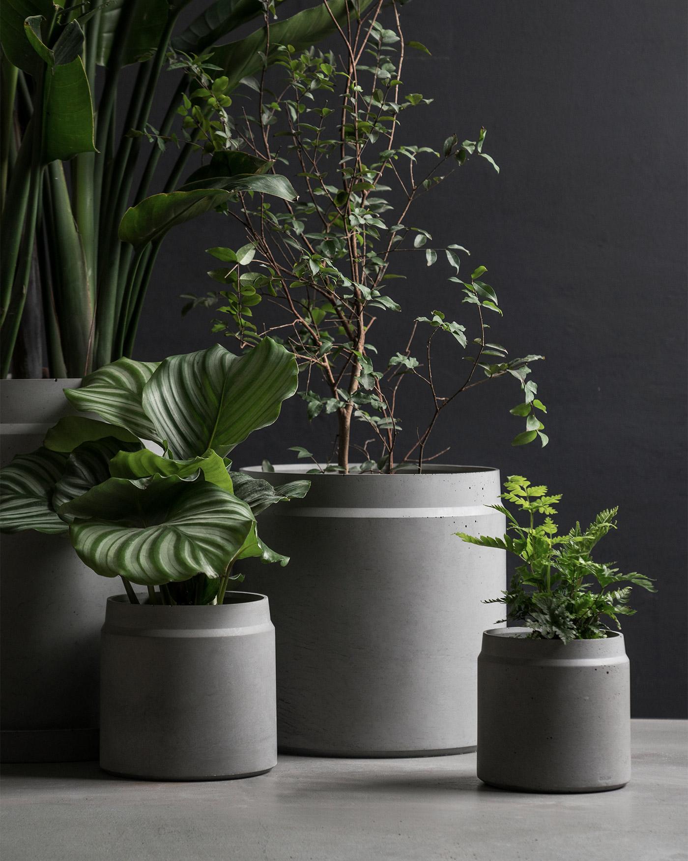 minimal round concrete planters with plants