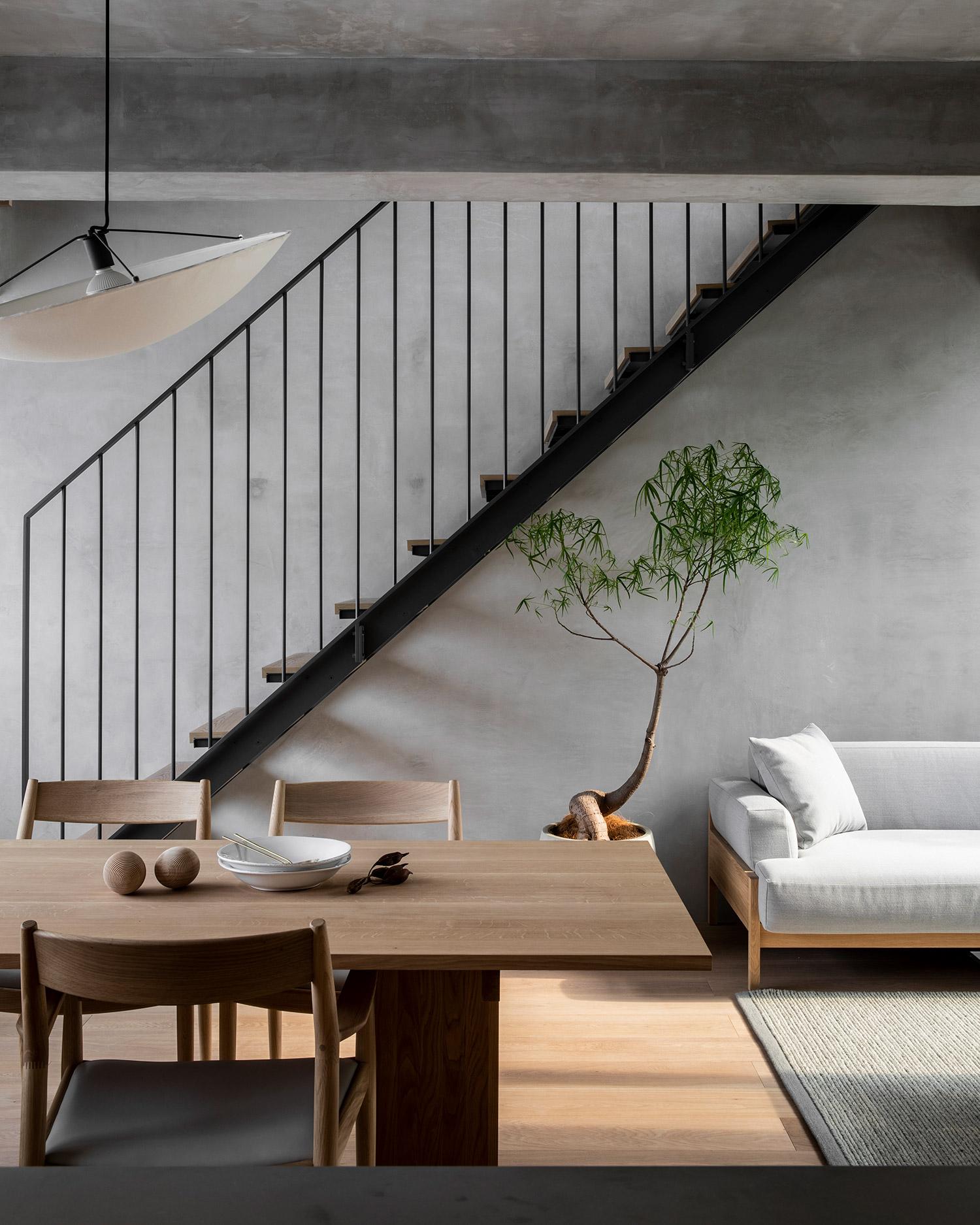 fine leaved Japanese tree in modern minimal concrete interior