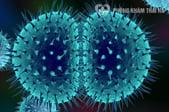 Bác sĩ chia sẻ kiến thức tổng hợp về bệnh lậu: nguyên nhân, triệu chứng, cách chữa trị