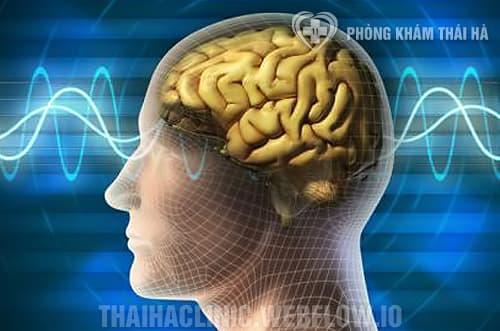 Hội chứng não cá vàng