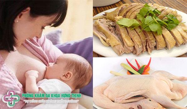 Mẹ bầu ăn thịt vịt có tốt không? Dinh dưỡng trong thịt vịt như thế nào?