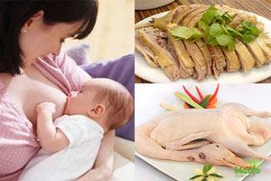 [Bật mí] Bà bầu sau sinh mổ có ăn thịt vịt được không tốt hay xấu