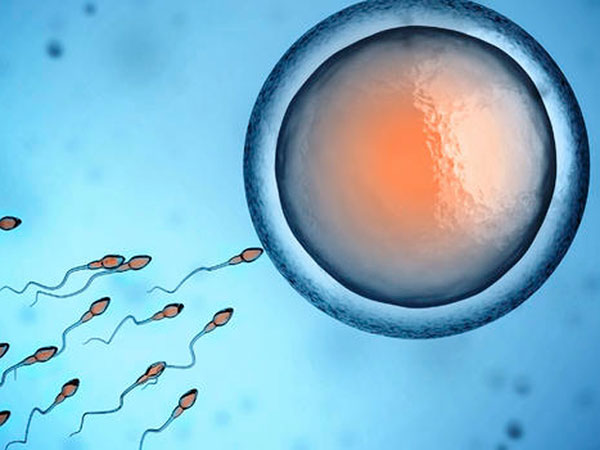 Có kinh nguyệt thì có thai không?
