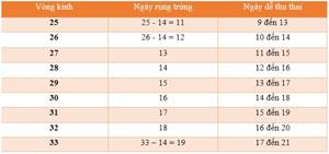 Cách tính ngày rụng trứng vòng kinh 30 ngày chính xác nhất