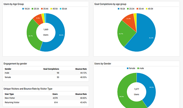 Google Analytics Dashboards_demographic.png