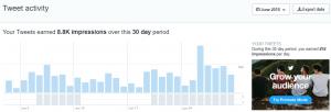 Twitter June month impression metrics