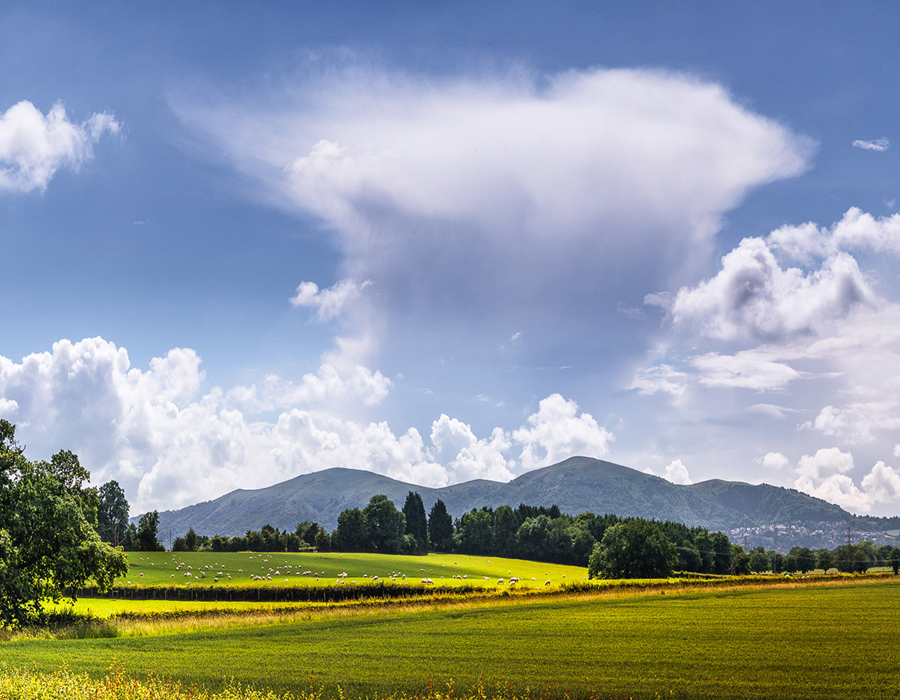 MHSP - Malvern Hills image