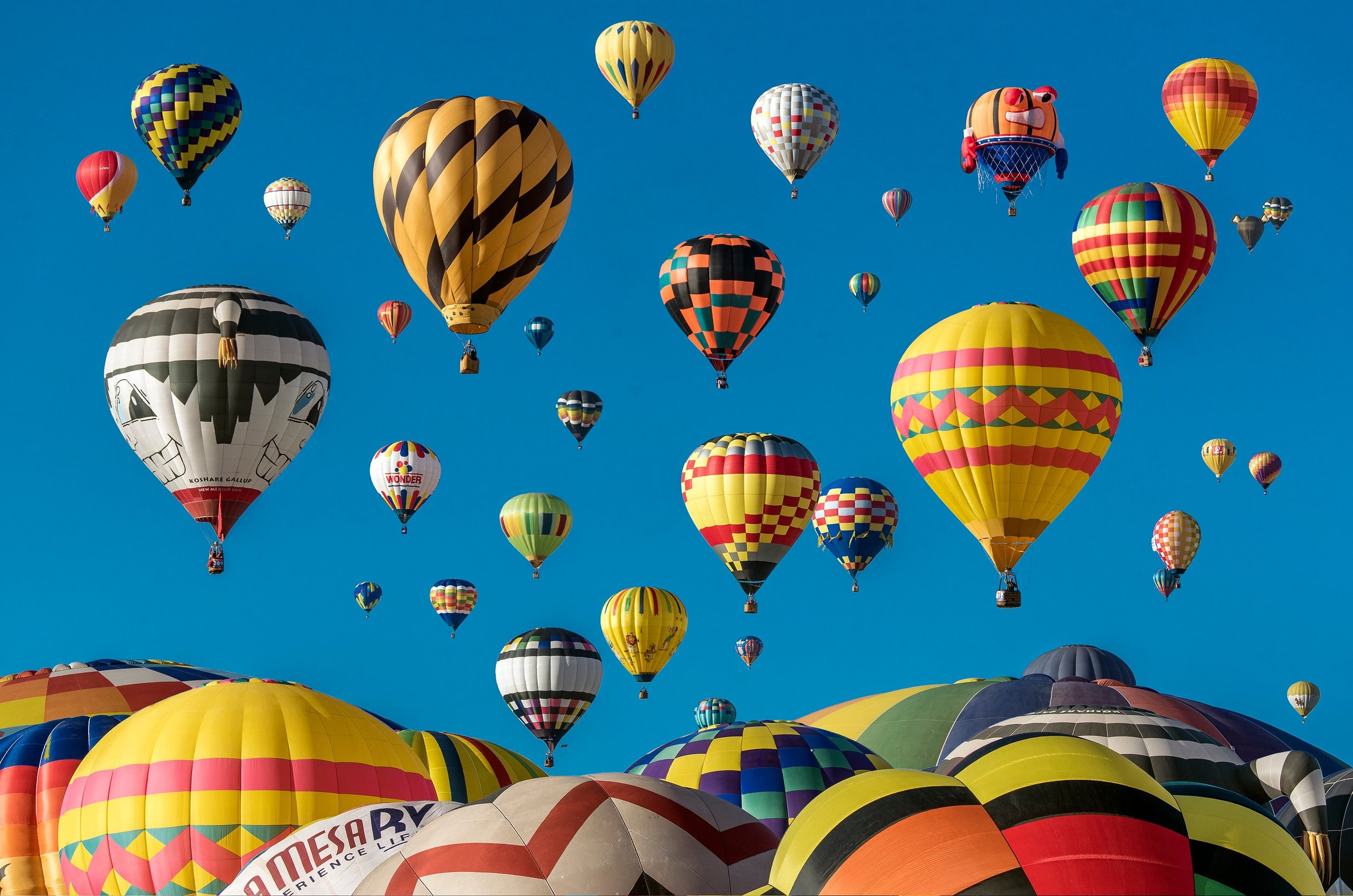 An Unsplash photo of hot air balloons in my hometown, Albuquerque, NM.