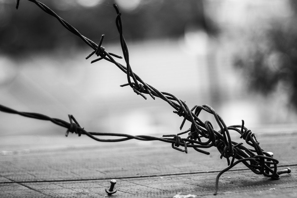 Close up of a barbed wire tied down