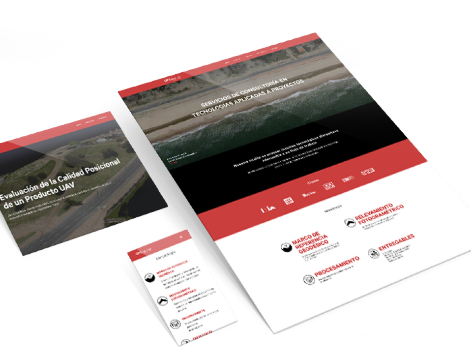 Web Design and Development for a consultancy