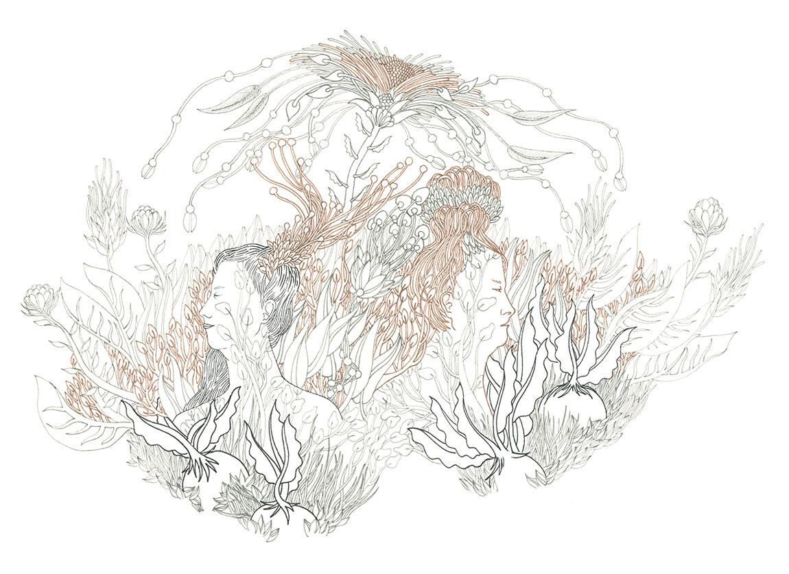 Ilustración de Laura Behnke - Ilustradores chilenos por 2Design Blog
