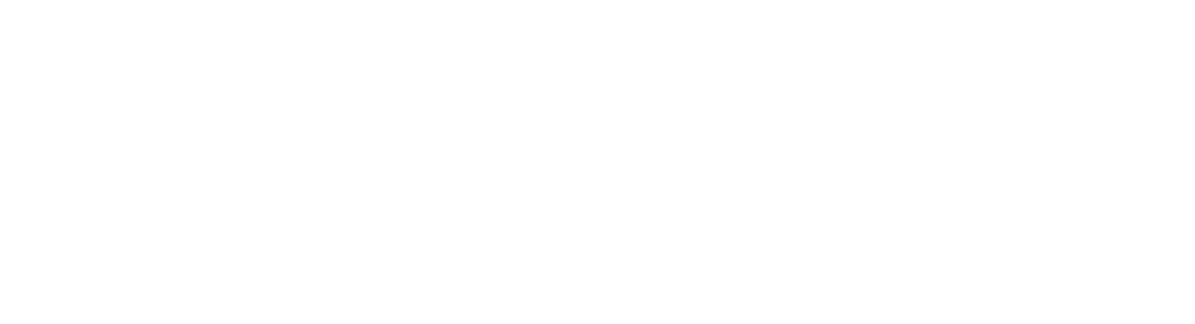 panache logo white