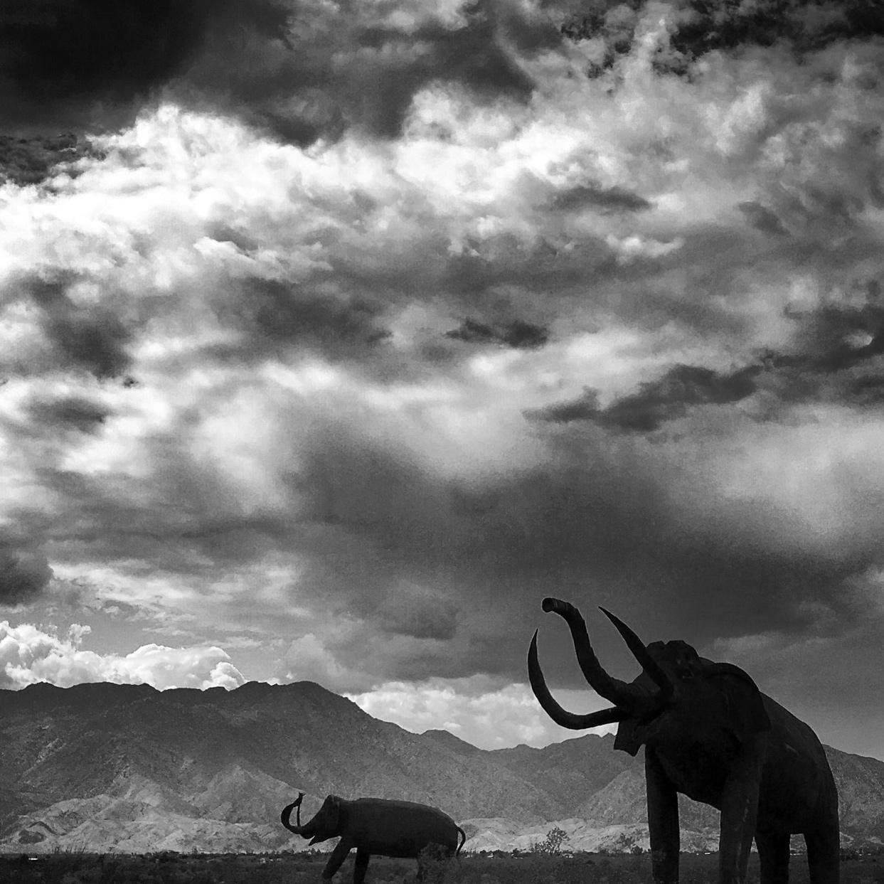 Black and white photo of the Ana-Borrego landscape with giant elephant statues.