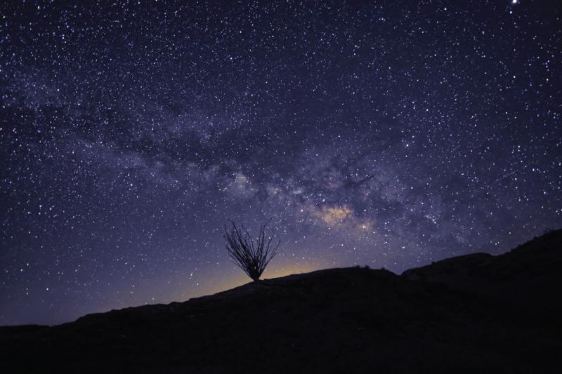 Starry night in Anza-Borrego