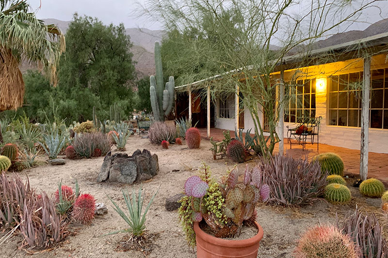 BILD's ranch with cactuses
