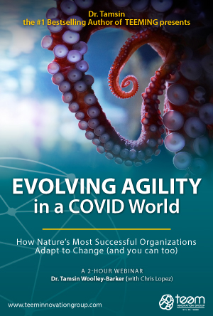 Evolving Agility in a COVID World - a 2 Hour Webinar