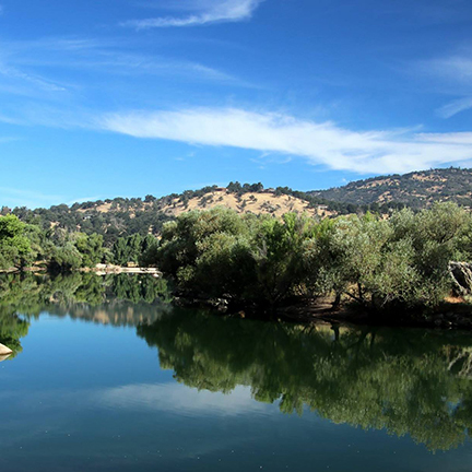 A view of a lake surrounded by trees with golden hills covered by green sage in the background