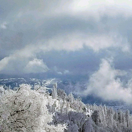 Deep snow and icy trees seen from the top of Cedar Creek, looking down over the valley