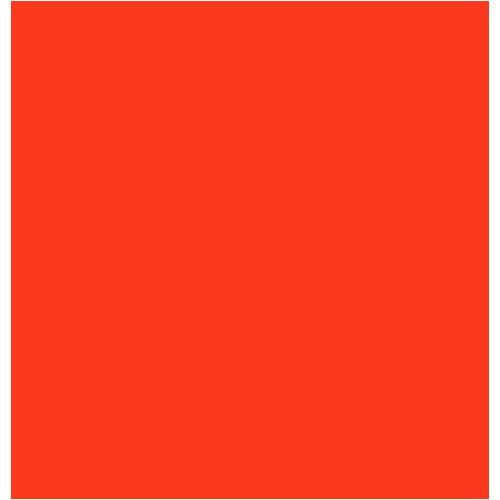 AAVS Logo