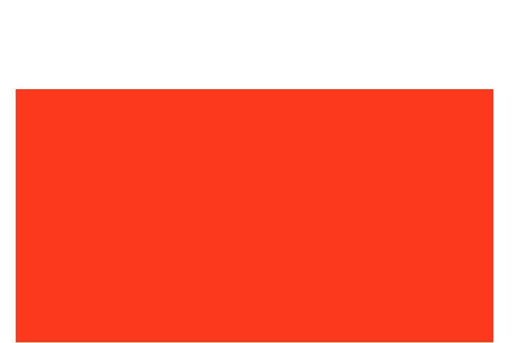 Raidy Logo