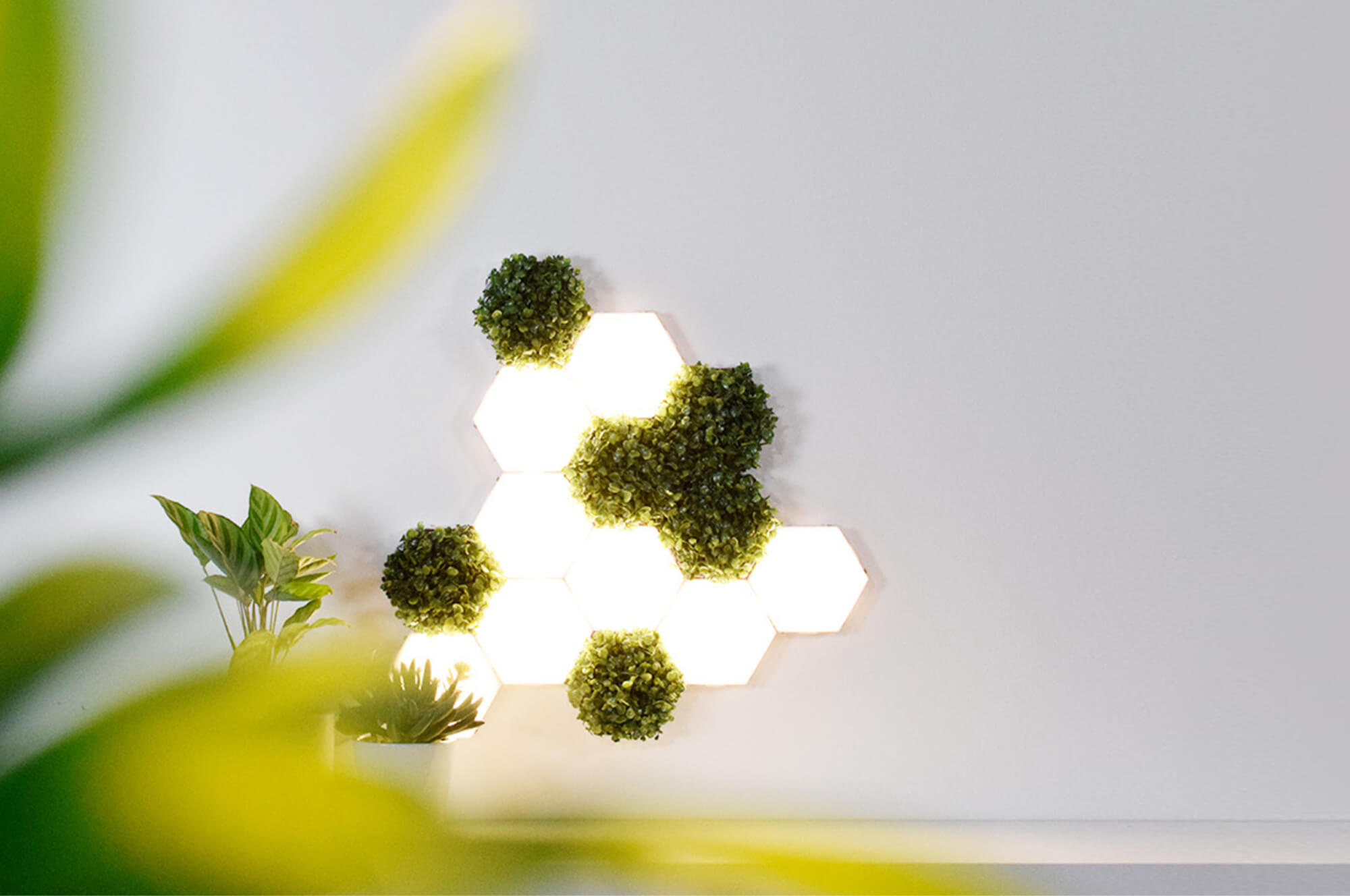 Polygon Lights