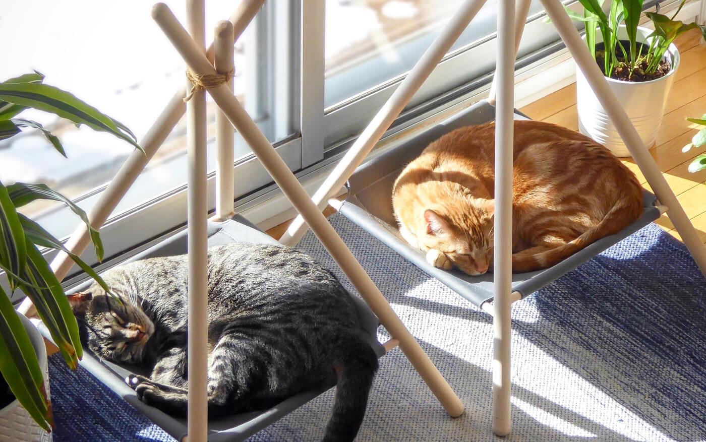 Tinker Adventure Cat Tent