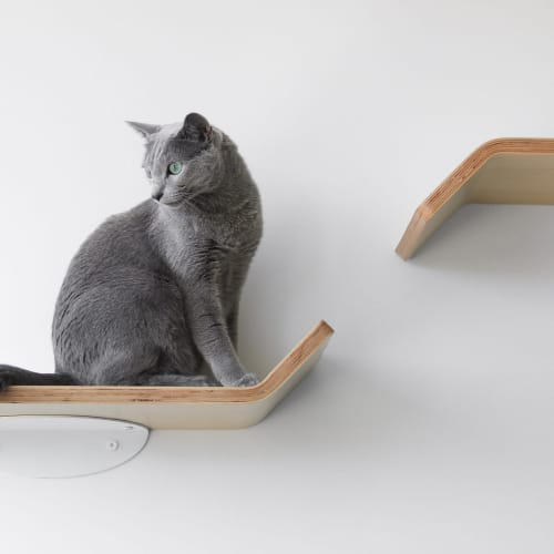 Figo Cat Shelves